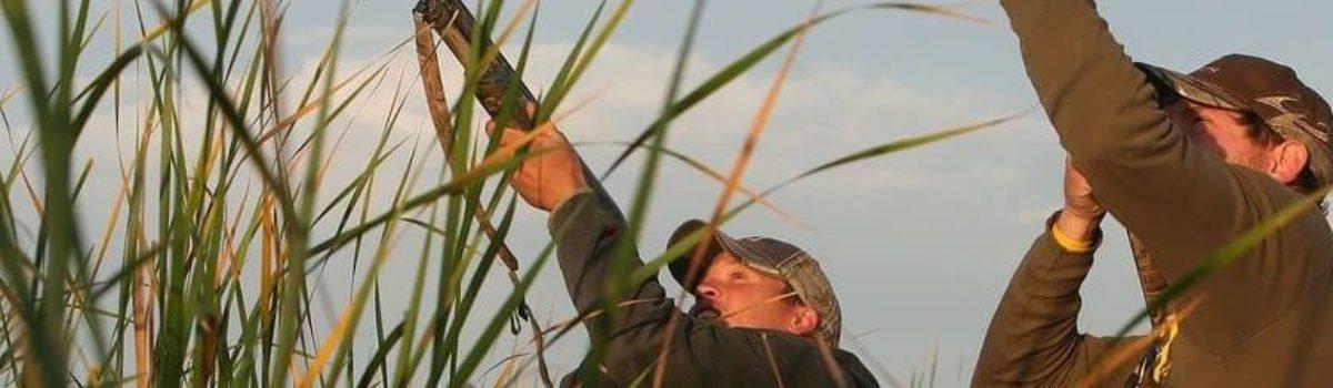 З 03 серпня на Шепетівщині розпочинається cезон полювання на пернату дичину