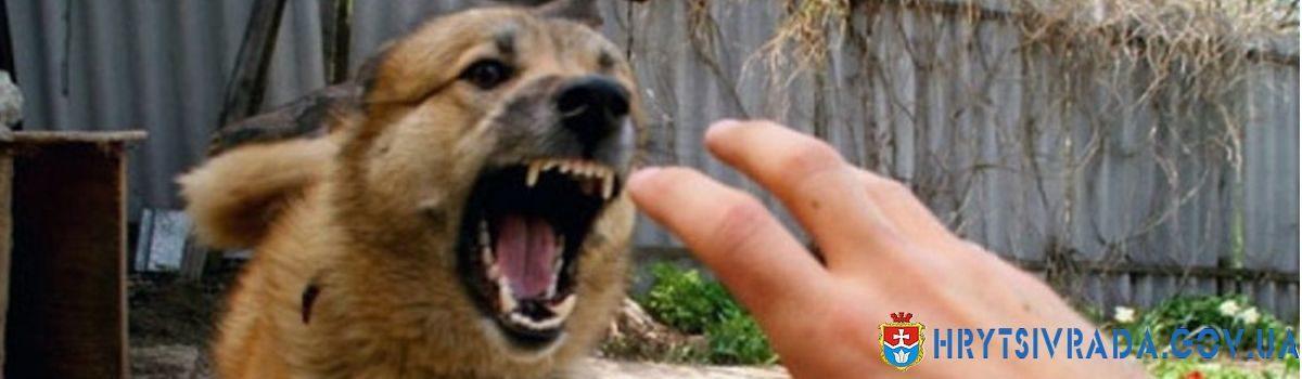 Сказ – небезпечна хвороба людей та тварин