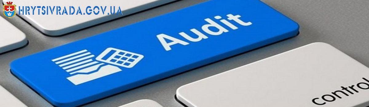 Хмельницькі аудитори протягом шести місяців 2020 року встановили порушень за процедурами закупівель вартістю понад 278 млн грн