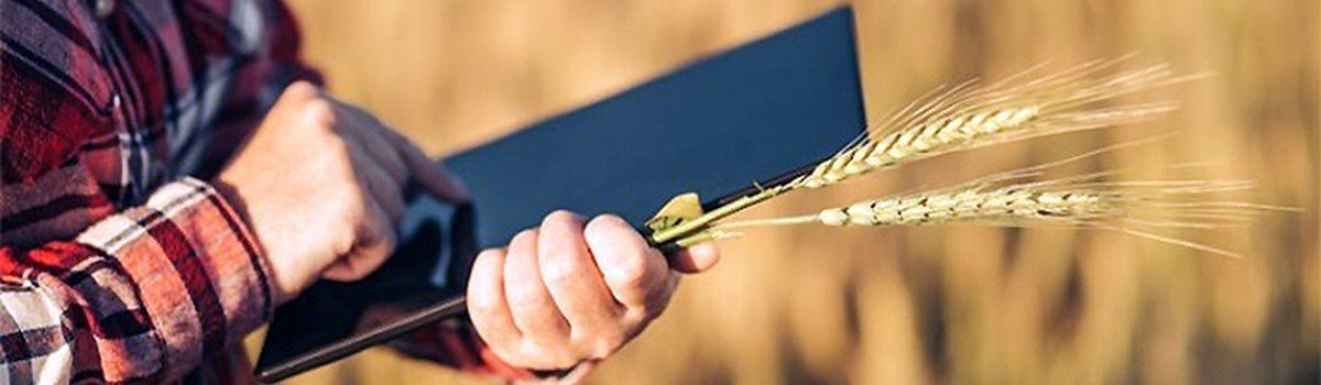 Стартує набір ОТГ для участі в Державному аграрному реєстрі