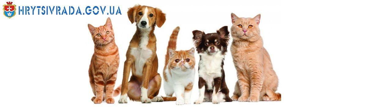 Здорові домашні тварини – здорові діти!
