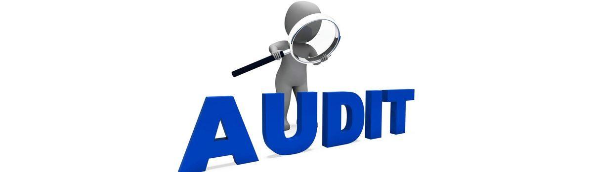 Хмельницькі аудитори протягом січня – червня 2020 року виявили втрат на суму 45 млн грн