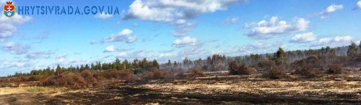 Чим небезпечні торф'яні пожежі