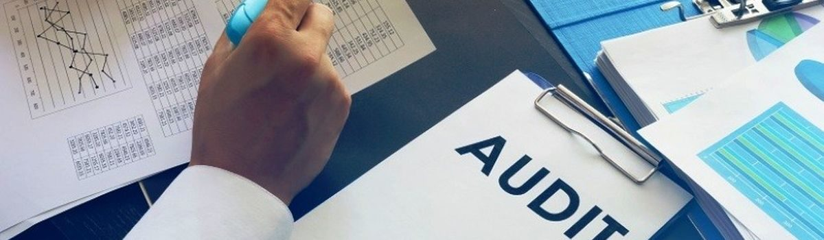 Держаудитслужба здійснює постійний контроль за результатами закупівель