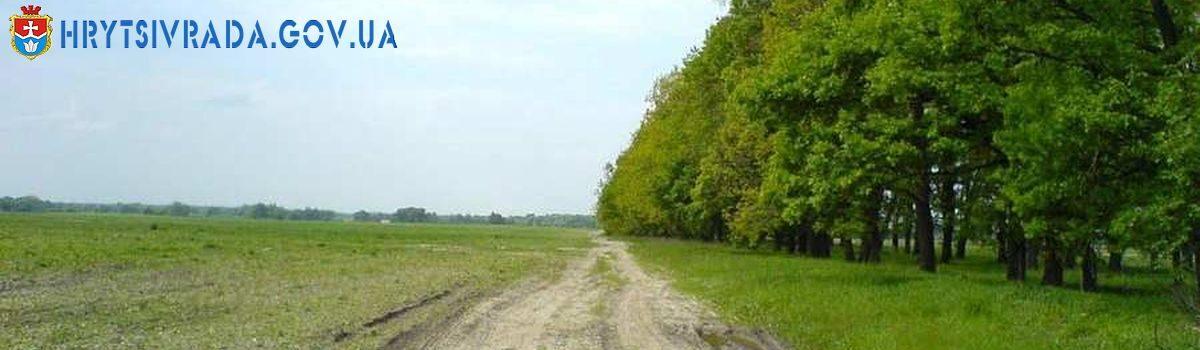 Правила утримання та збереження полезахисних лісових смуг, розташованих на землях сільськогосподарського призначення