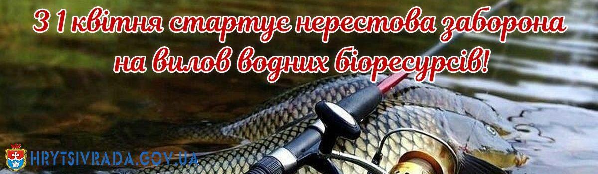 З 1 квітня стартує нерестова заборона на вилов водних біоресурсів